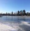 Дубешня зима 2017
